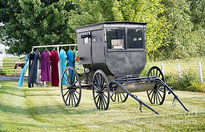 Amish Photograph - Buggy For Sale by David Arment