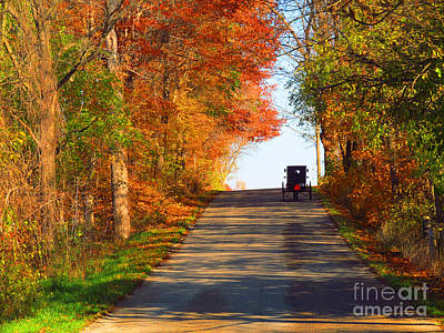 Tinawenger Photograph - Buggy On A Lonely Road In The Fall by Tina M Wenger