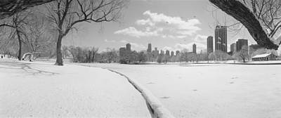 Bare Trees Photograph - Buildings In A City, Lincoln Park by Panoramic Images