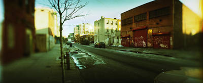 Bare Trees Photograph - Buildings In A City, Williamsburg by Panoramic Images