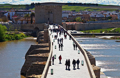 Cordoba Photograph - Built In The Early 1st Century Bc by Panoramic Images