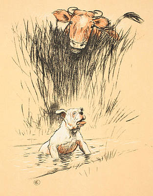 Bull And Dog In Field Art Print by Cecil Charles Windsor Aldin