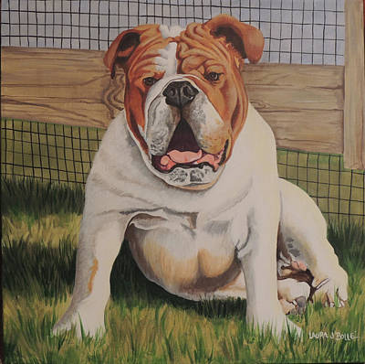 English Bull Dog Wall Art - Painting - Bull Dog by Laura Bolle