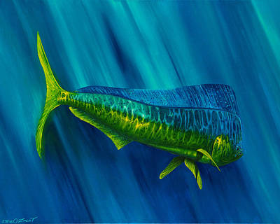 Fish Underwater Painting - Bull Dolphin by Steve Ozment