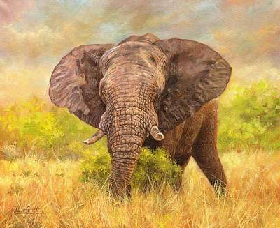 Tusks Painting - Bull Elephant by David Stribbling