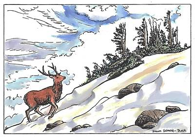 Drawing - Bull Elk At Timberline by Dawn Senior-Trask