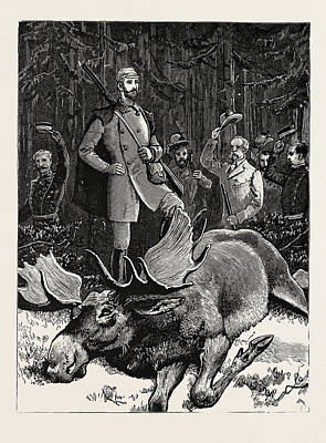 Elk Drawing - Bull Elk Killed By The Crown Prince Of Sweden At Hunneberg by Swedish School