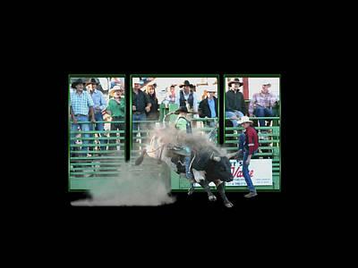Photograph - Bull It - Framed by Liz Marr
