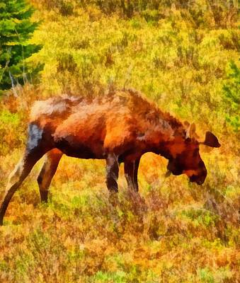 Yellowstone Mixed Media - Bull Moose Painting by Dan Sproul