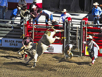 Photograph - Bull Riding by Ron Roberts