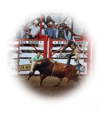 Olympic Sports - Bull riding by Steven Baier