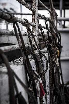 Photograph - Bull Ropes by Amber Kresge