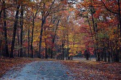 Autumn Landscape Photograph - Bull Run Autumn by Armand Cabrera