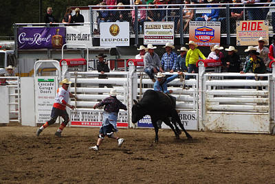 Photograph - Bull Targets by Jacqueline  DiAnne Wasson
