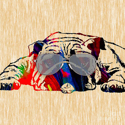 Pet Mixed Media - Bulldog Collection by Marvin Blaine