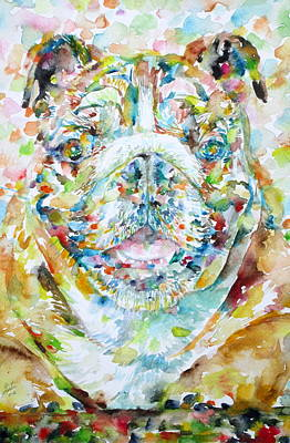 Painting - Bulldog by Fabrizio Cassetta