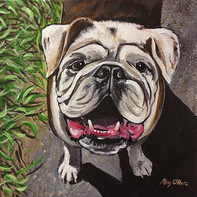 Painting - Bulldog by Meghan OHare