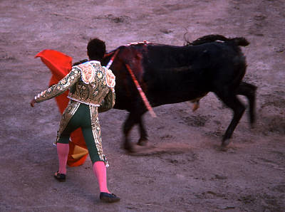 Photograph - Bullfight - Green And Gold by Robert  Rodvik
