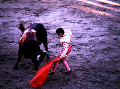Photograph - Bullfight - Matador Draws Sword by Robert  Rodvik
