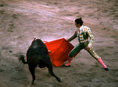 Photograph - Bullfight - Red Cape Spread by Robert  Rodvik