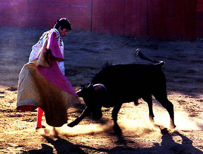 Photograph - Bullfight - Toro Fuels His Charge by Robert  Rodvik