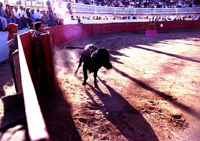Photograph - Bullfight - Toro Races The Ring by Robert  Rodvik