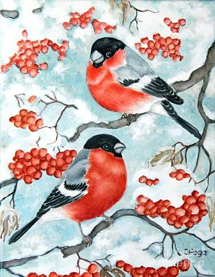 Bullfinch Couple Art Print by Inese Poga