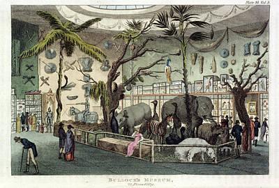 Bullock's Museum Art Print by British Library