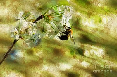 Bumble Bee Eating Sweet Nectar Art Print by Dan Friend