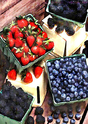 Bunch Of Berry Boxes Art Print by Elaine Plesser