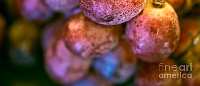 Grapes Photograph - Bunch Of Grapes Panorama by Patricia Bainter