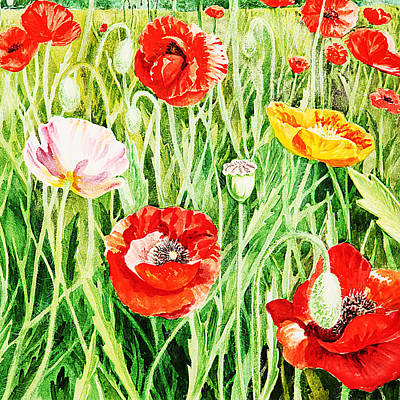 Food And Flowers Still Life Rights Managed Images - Bunch Of Poppies II Royalty-Free Image by Irina Sztukowski