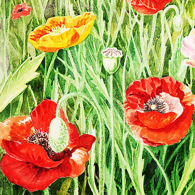 Poppies Field Painting - Bunch Of Poppies IIi by Irina Sztukowski