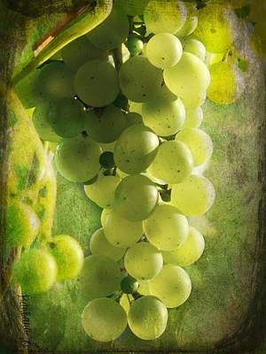Bunch Of Yellow Grapes Art Print by Barbara Orenya