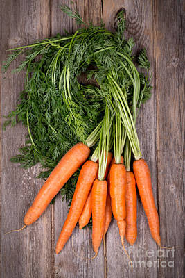 Bunched Carrots Art Print by Jane Rix