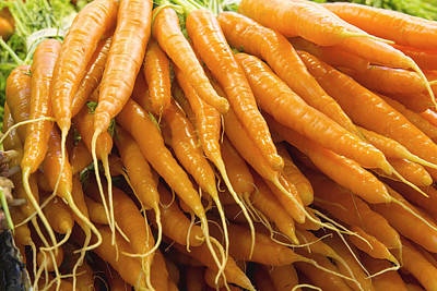 Western Art - Bunches of Carrots Closeup by Jit Lim