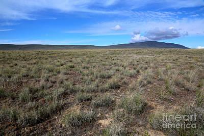 Photograph - Bunchgrass Of Eastern Washington by Carol Groenen