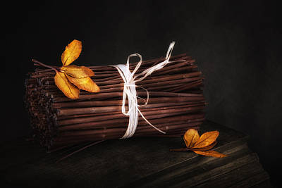 Stick Photograph - Bundle Of Sticks Still Life by Tom Mc Nemar