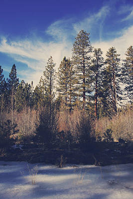 Winter Landscapes Photograph - Bundle Up by Laurie Search