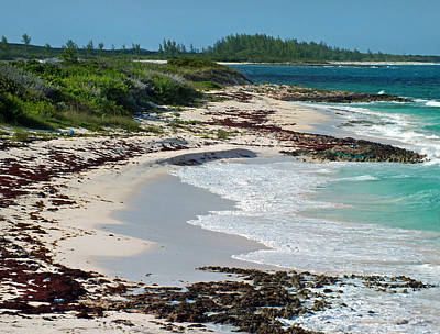 Photograph - Bungalow Beach 2 On Eleuthera by Duane McCullough