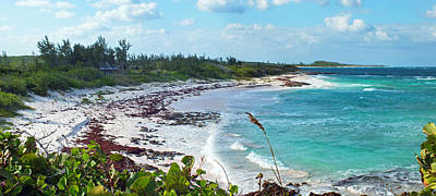 Photograph - Bungalow Beach On Eleuthera by Duane McCullough