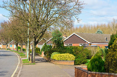 Suburbia Photograph - Bungalows by Tom Gowanlock