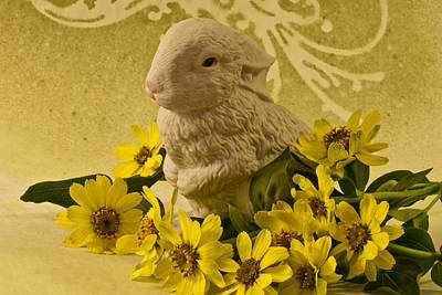 Flower Still Life Photograph - Bunny And Daisies  by Sandra Foster