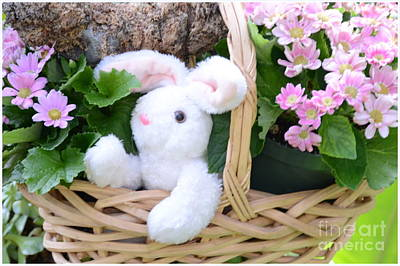 Bunny In A Basket Print by Kathleen Struckle