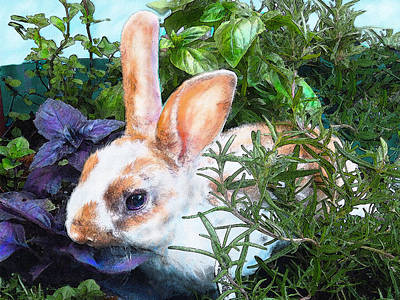 Digital Art - Bunny In The Herb Garden by Jane Schnetlage