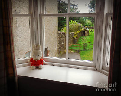 Photograph - Bunny In The Window by Valerie Reeves