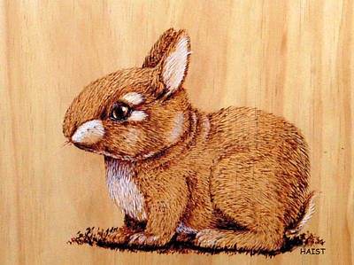 Pyrography - Bunny by Ron Haist
