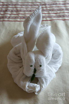 Photograph - Bunny Towel Origami by John  Mitchell