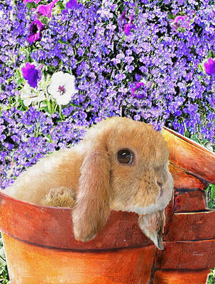 Digital Art - Bunny With Flowerpots by Jane Schnetlage