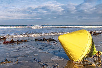 Buoys Photograph - Buoy At Low Tide by Olivier Le Queinec